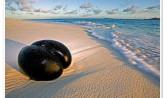 Seychelles - Coco de Mer, Valle de May, Praslin Island
