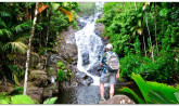 Seychelles -  Port Glaud, Mahe Island